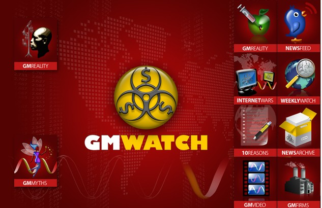 gmwatch_main