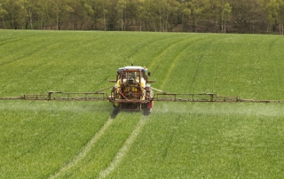 "New research shows regulatory ""safe"" limits for glyphosate may not be safe at all"