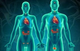 Endocrine Disruptors are also Nervous System Disruptors